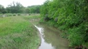 Healthier Streams, Cleaner Water featured image