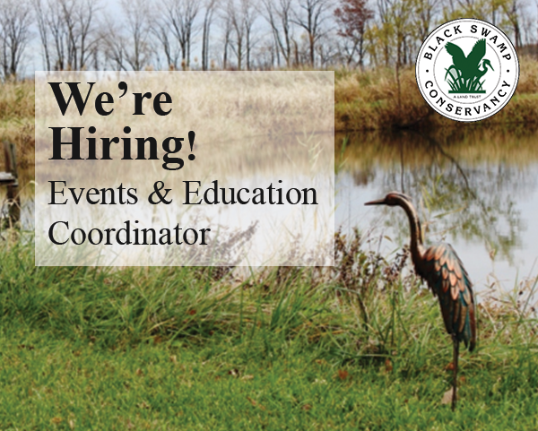 We're Hiring: Events & Education Coordinator featured image