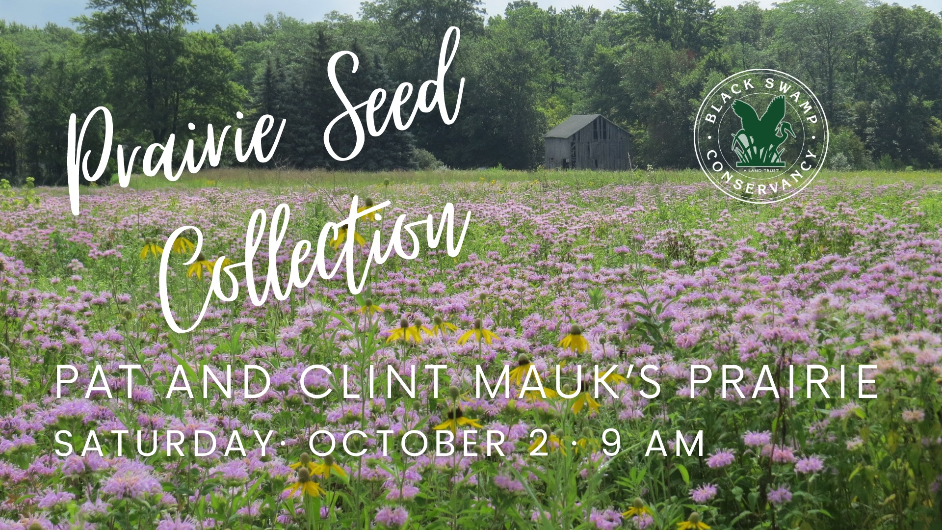 prairie seed collection event image